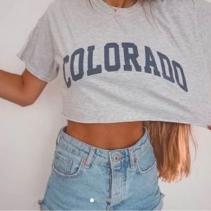 Brandy Melville Colorado Crop top